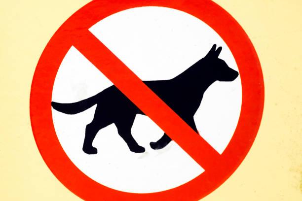 No dogs allowed sign road sign picture id1063361650?b=1&k=6&m=1063361650&s=612x612&w=0&h=ub7yorkoydfcizwkzhvwqguekcijnrfv5msmpxfs3ig=