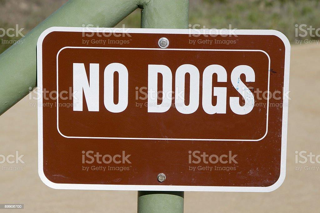 Keine Hunde - Lizenzfreies stock-foto
