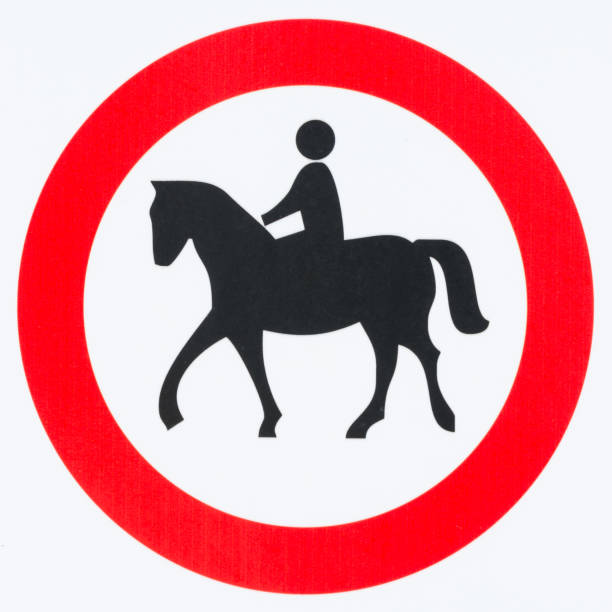 royalty free riding horses in circles pictures images and stock