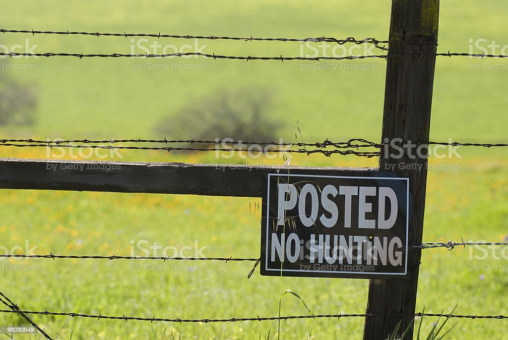 No Hunting royalty-free stock photo