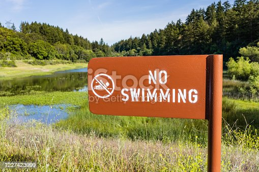 No swimming sign posted on the shoreline of a mountain lake covered in aquatic vegetation, California