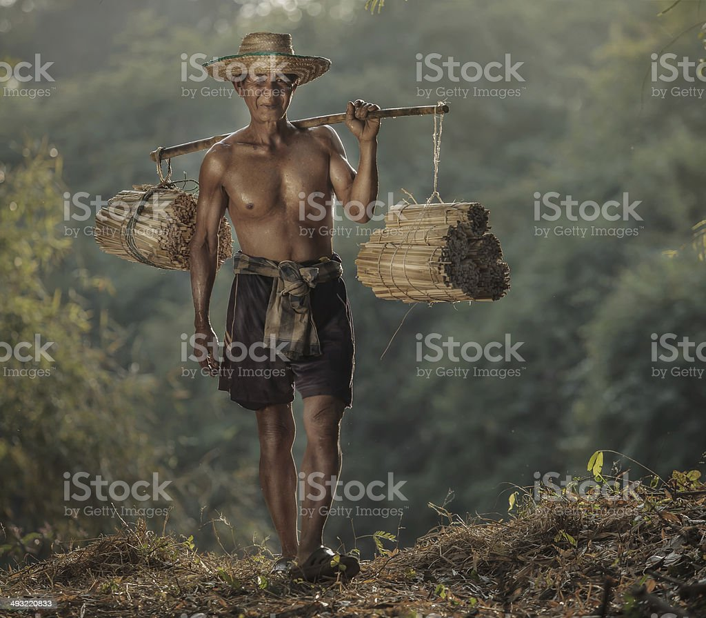 No tiring day at work. stock photo