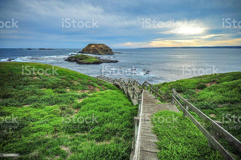 Nobbies, boardwalks to Ocean, Phillip Island, Australia stock photo