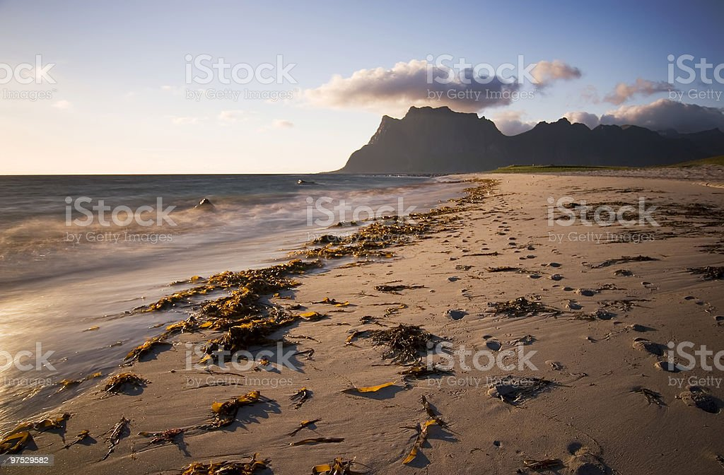 nobody at the beach royalty-free stock photo