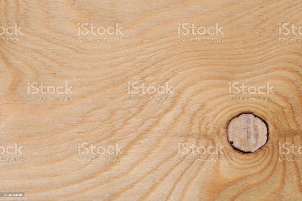 Nodes of the tree stock photo