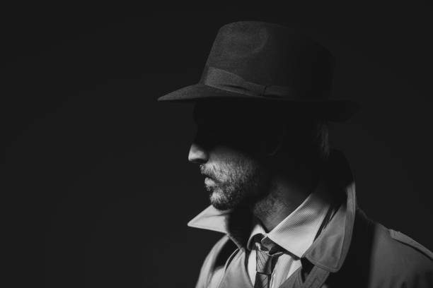 Noir film detective posing in the dark stock photo