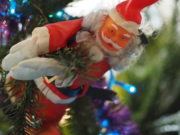 Noël père-noël accroché à une branche de sapin Sapin de Noël Lyon (France) sapin noel stock pictures, royalty-free photos & images