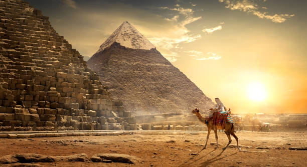 nomad near pyramids - pyramid stock photos and pictures