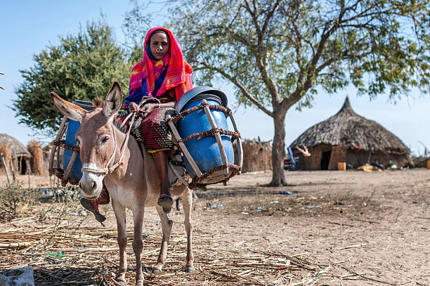 nomad woman - somalia stock photos and pictures