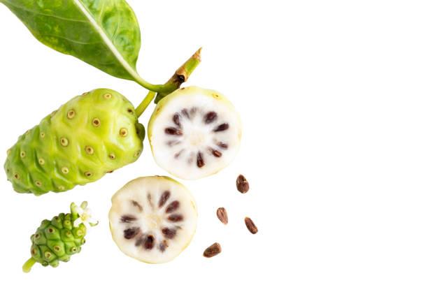 노 니 과일 또는 마린 다 시 트리폴리 아와 노 니 슬라이스 씨와 녹색 백색 blackground 텍스트 복사 공간에 고립 된 노 니의 나뭇잎. 최고의 볼 수 있습니다. 스톡 사진