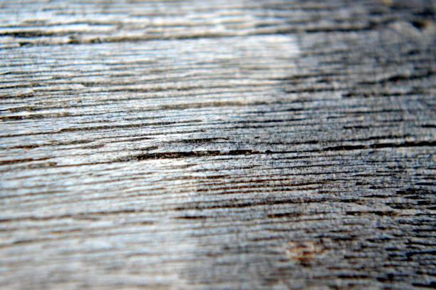Non-protected hard wood close up stock photo