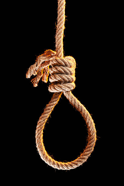 noose isolated on black - noose stock photos and pictures