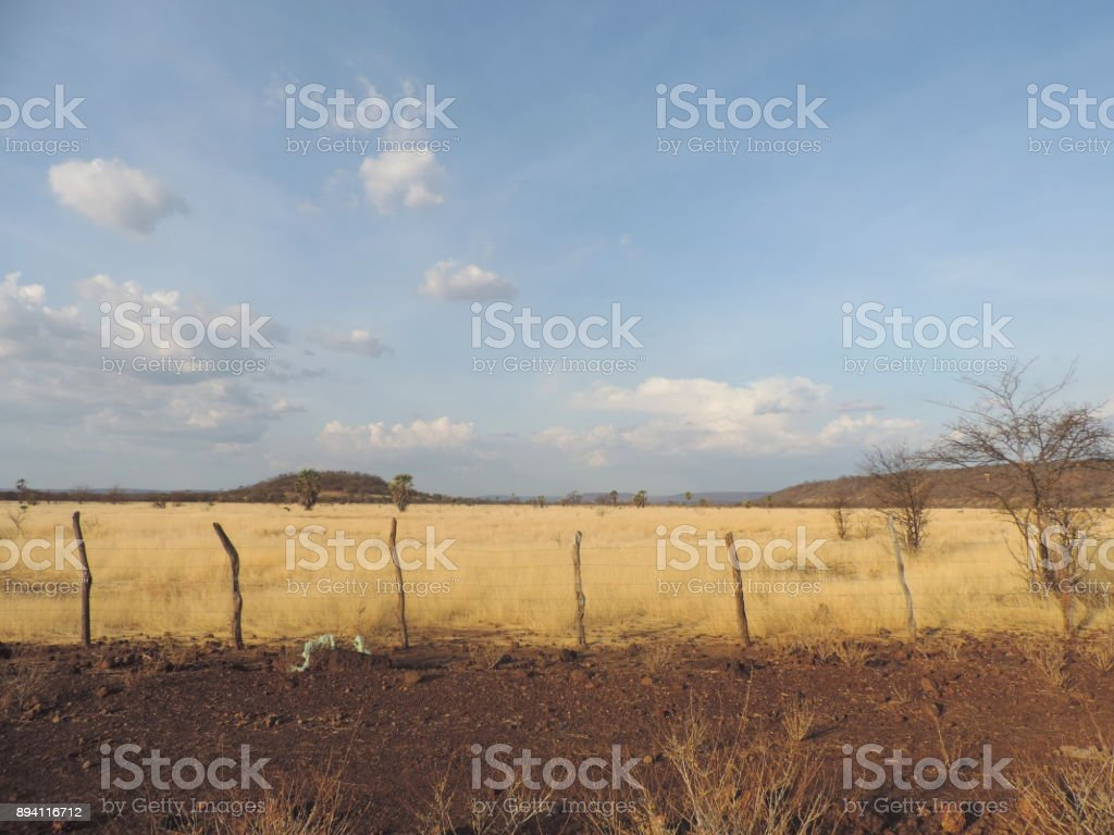 Nordeste do Brasil- Paisagem Árida stock photo