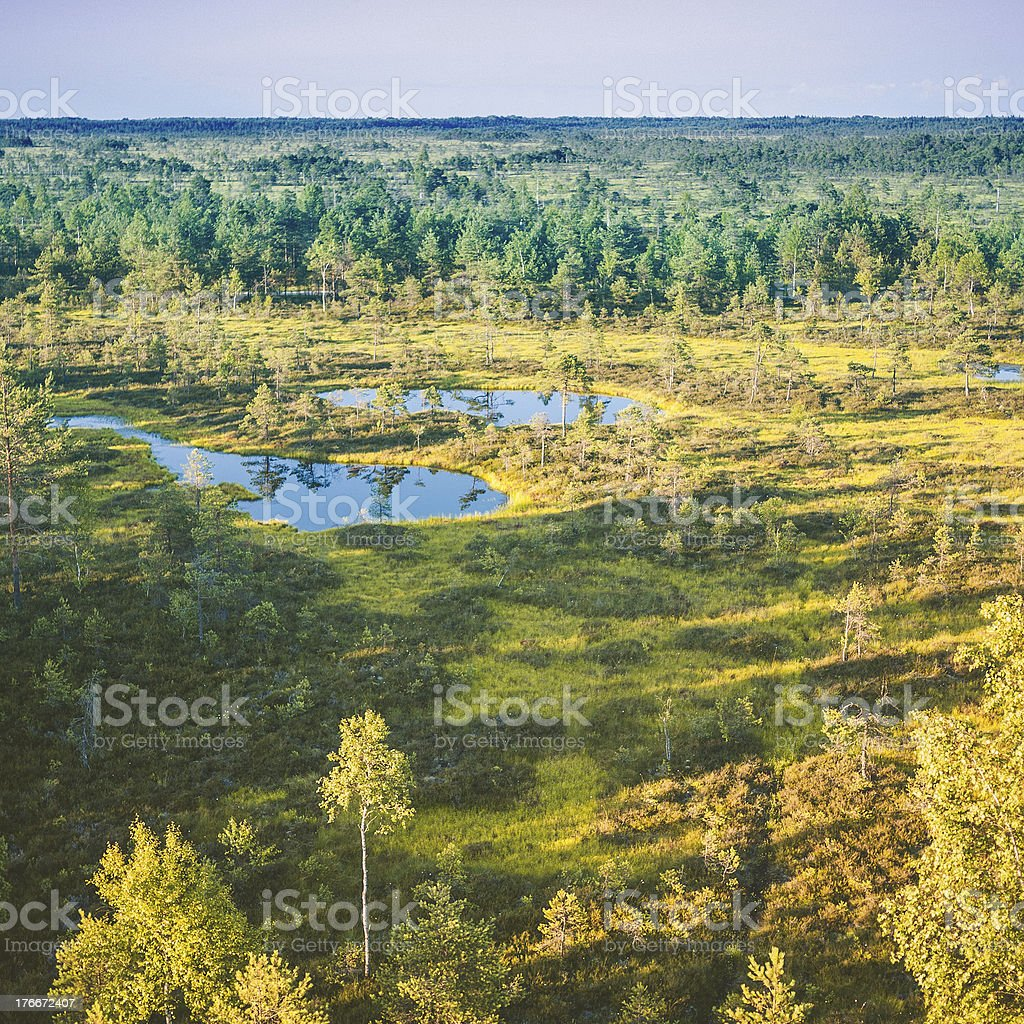 Nordic landscape. royalty-free stock photo
