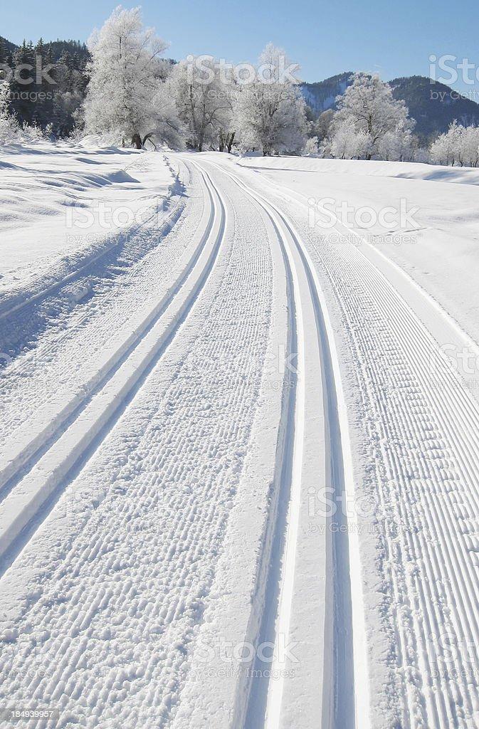 Nordic ski tracks stock photo