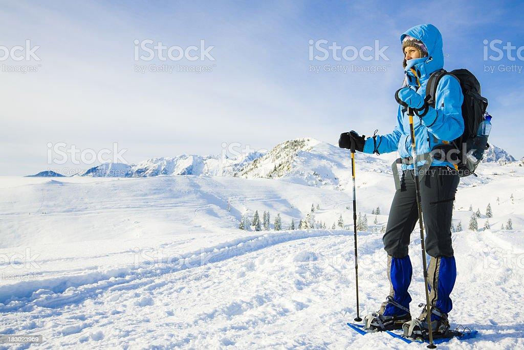 nordic snowshoeing stock photo