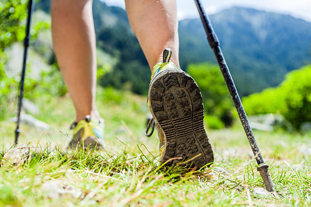 Nordic walking hiking sport shoes in mountains Woman hiking in mountains, adventure and exercising. Nordic walking in sunny  summer nature outdoors. Legs and sport shoes walk on grass nordic walking stock pictures, royalty-free photos & images