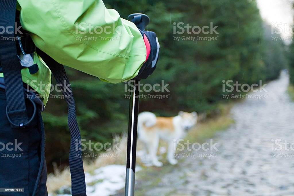 Nordic walking in mountains stock photo