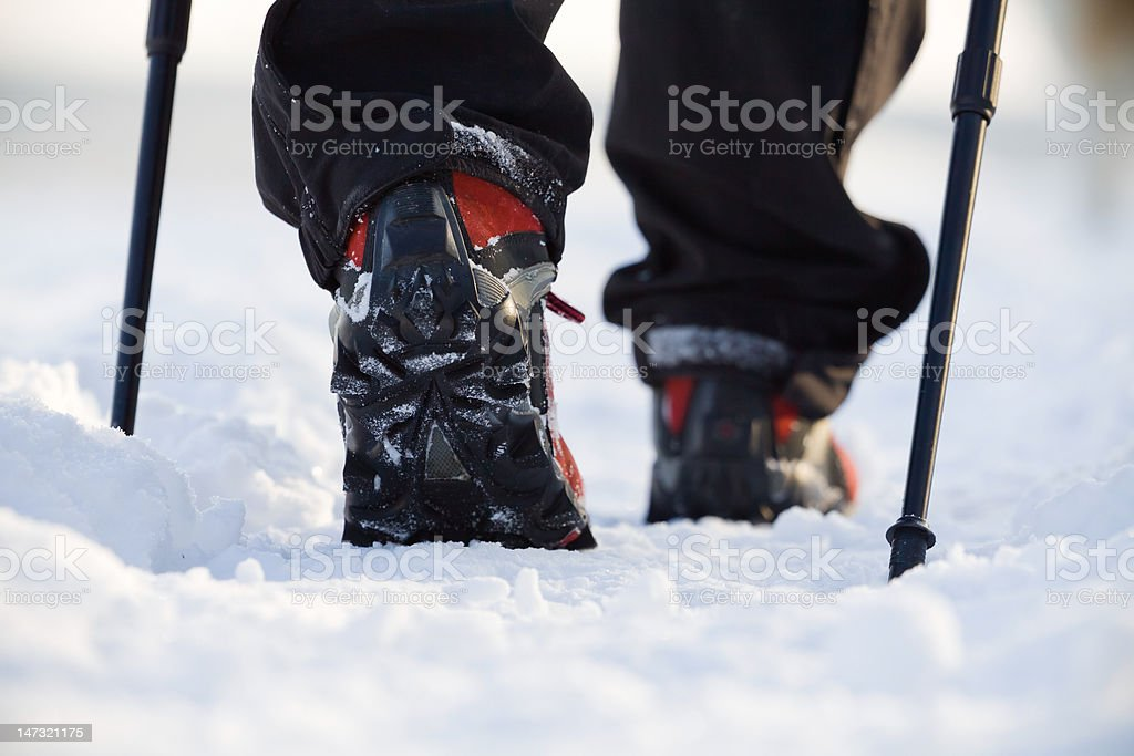 Nordic walking in winter royalty-free stock photo