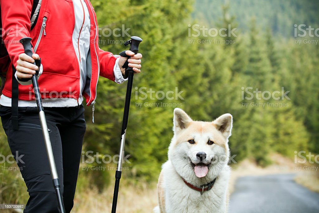 Nordic Walking with dog royalty-free stock photo