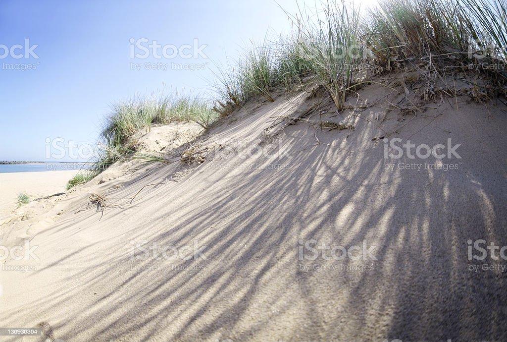 Norfolk Beach Sand Dunes stock photo