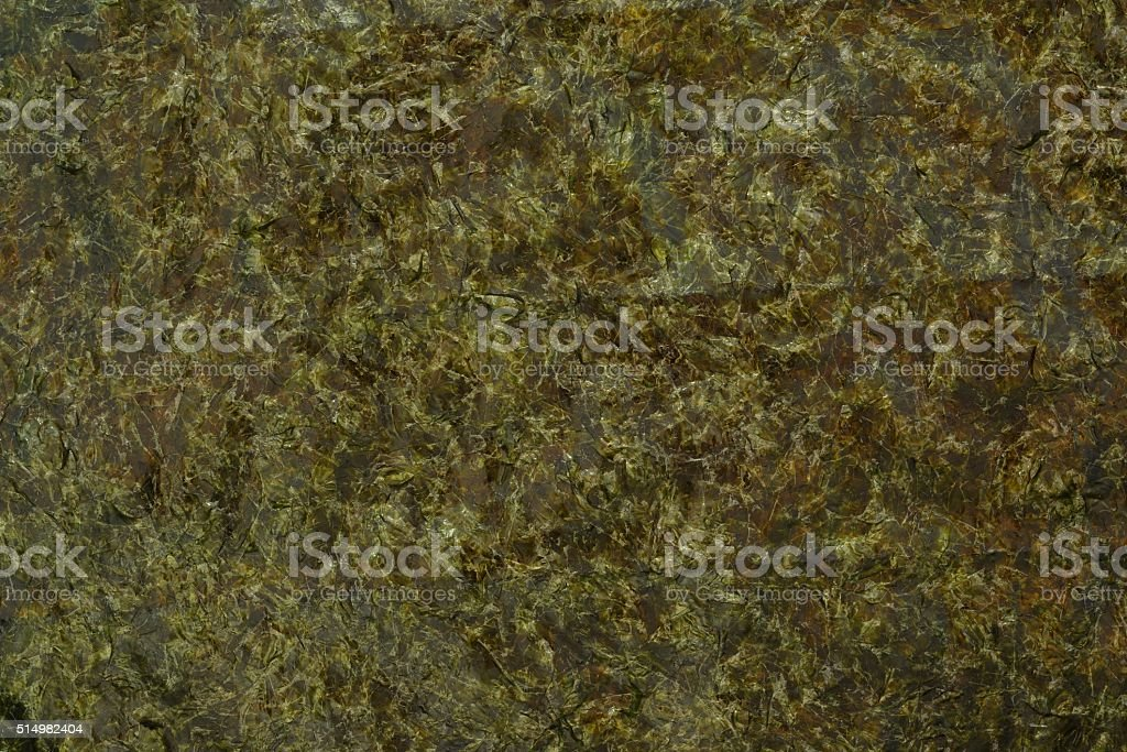 Nori comestible fondo algas - foto de stock
