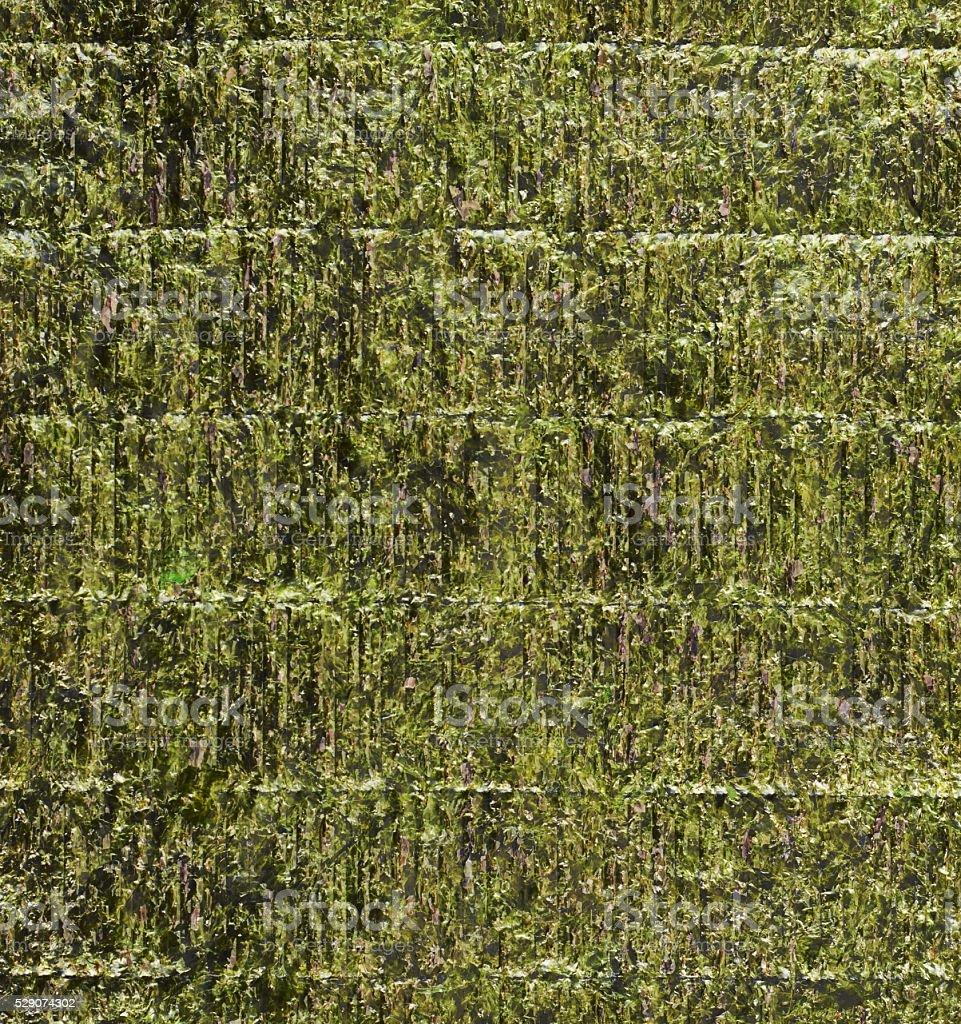 Nori edible seaweed sheet stock photo