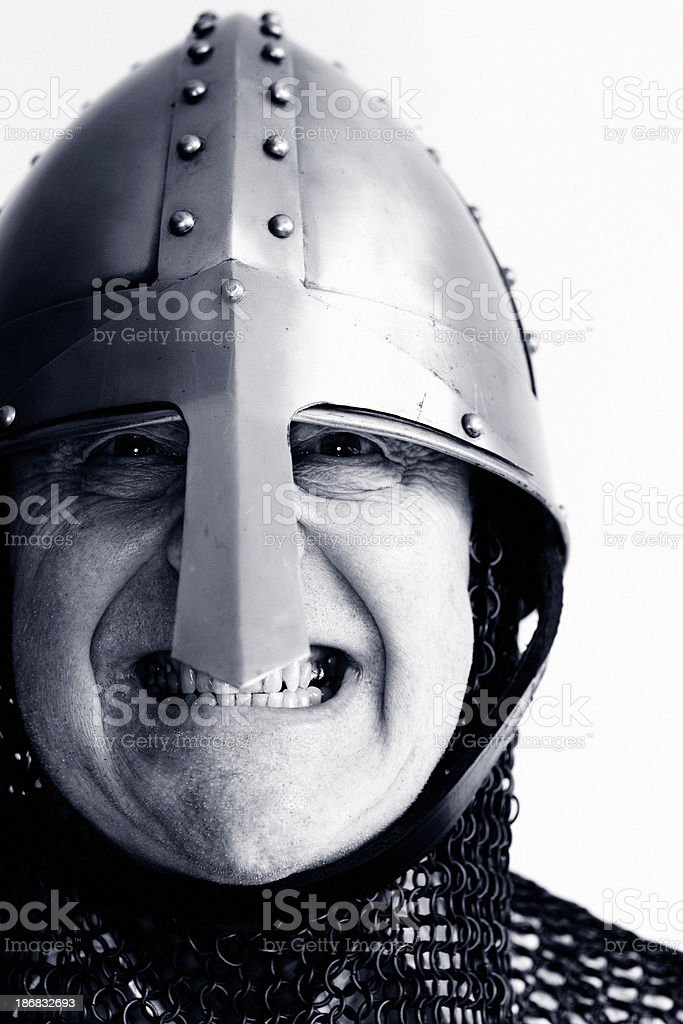 Norman Warrior royalty-free stock photo