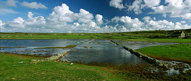 Normandy landscape Swamp in the Normandy country. manche stock pictures, royalty-free photos & images