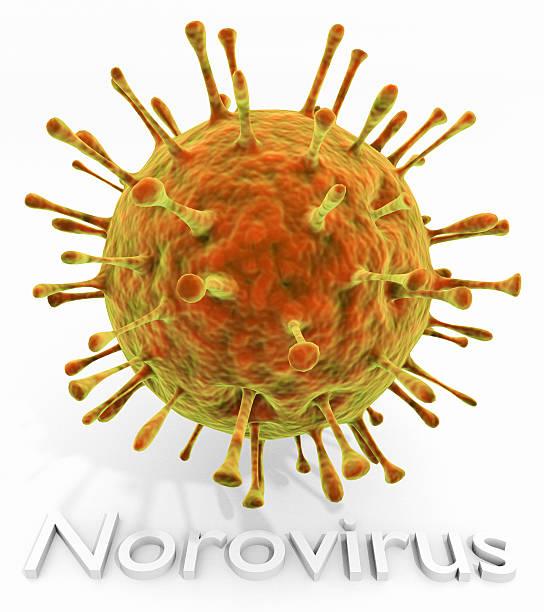 Norovirus With Text stock photo