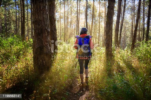 woman trekking walks to the deep of the forest jungle, explore the nature in holidays weekend