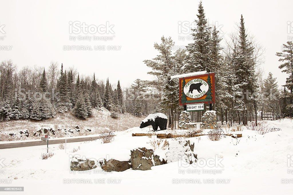 North American Bear Center royalty-free stock photo