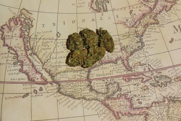North American cannabis stock photo