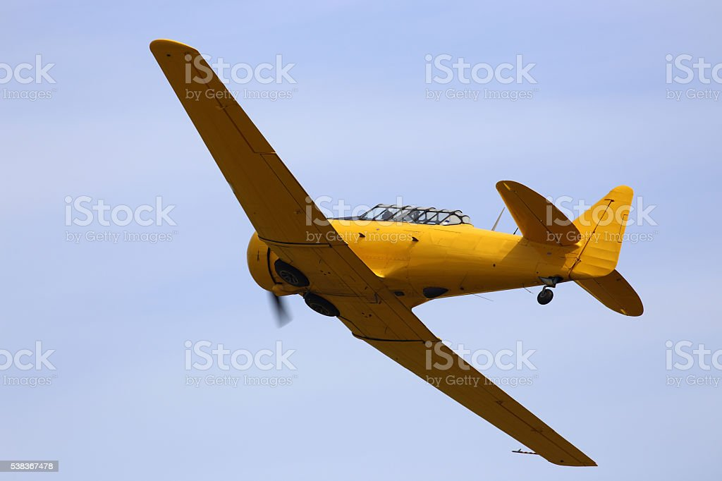 North American Texan stock photo