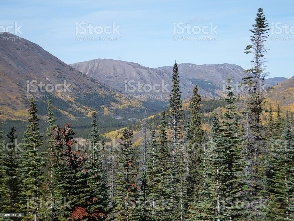North American Wilderness stock photo