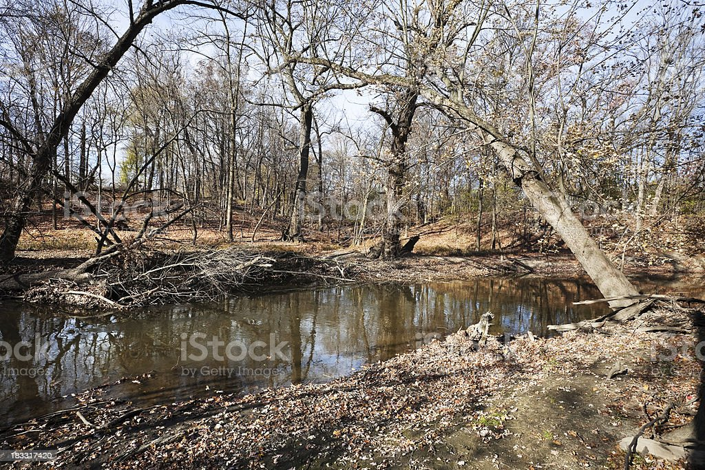 North Branch Chicago River in Caldwell Woods royalty-free stock photo