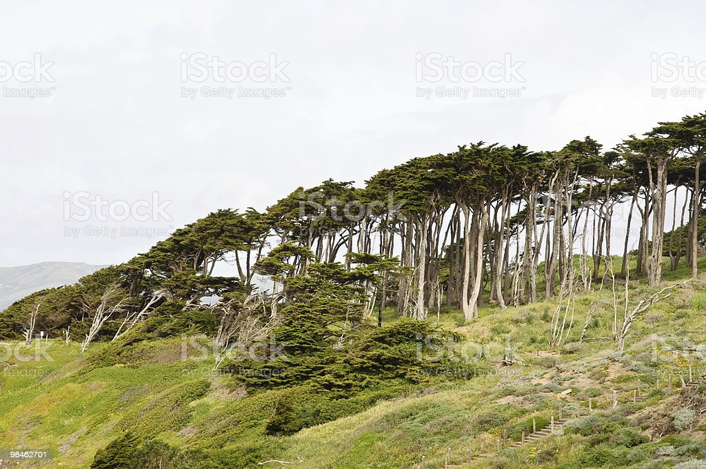 North California coast royalty-free stock photo