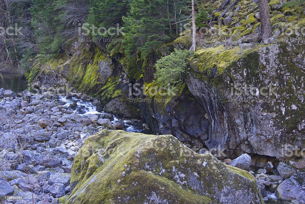 North Cascades Creek royalty-free stock photo