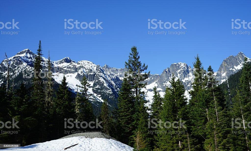 North Cascades Scene stock photo