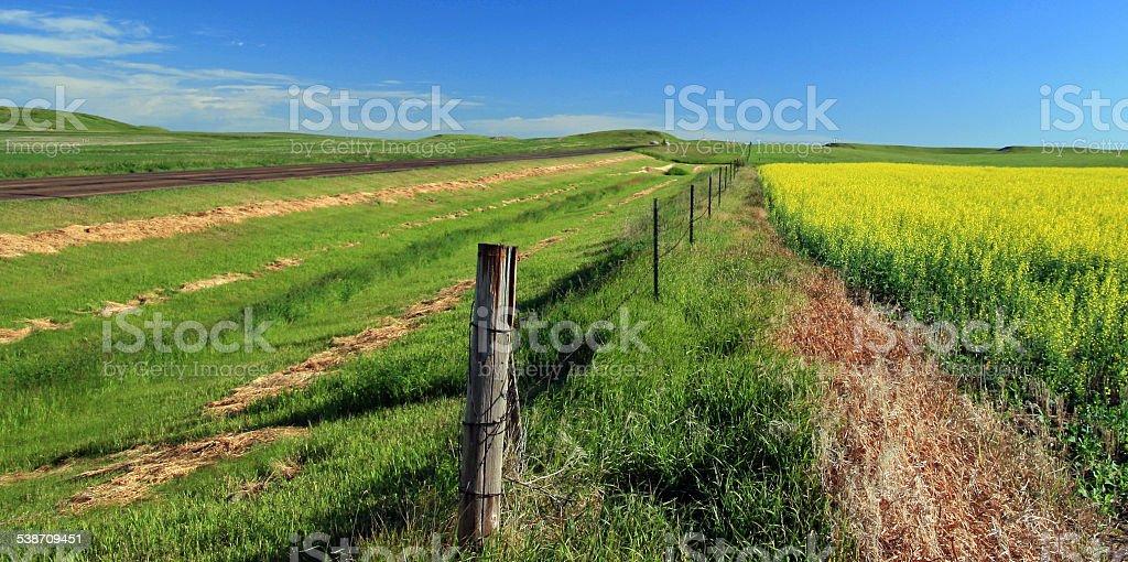 North Dakota Prairie Farmlands stock photo