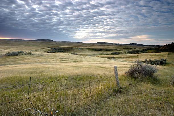 north dakota prairie - great plains stock photos and pictures