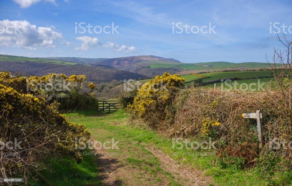 North Devon landscape, England stock photo