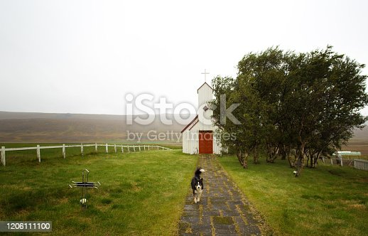 North Iceland: Dog at Traditional Red and White Chapel. Shot in September.