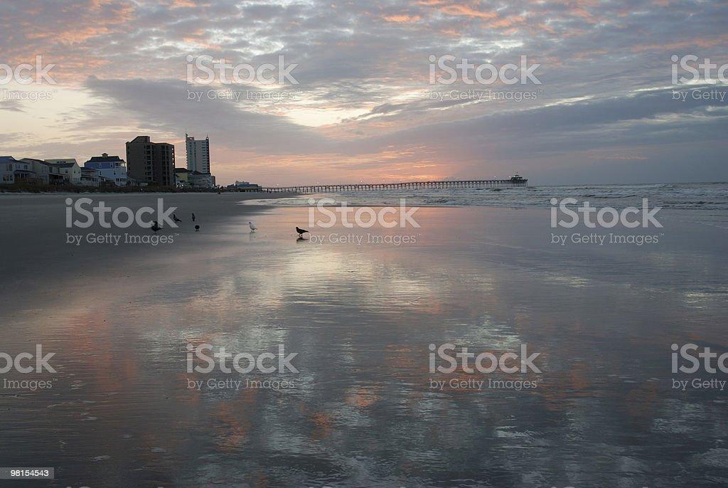 North Myrtle Beach-riflessioni nella sabbia foto stock royalty-free