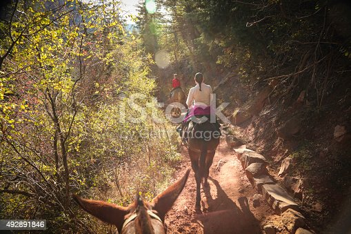 North Rim Grand Canyon family on mules