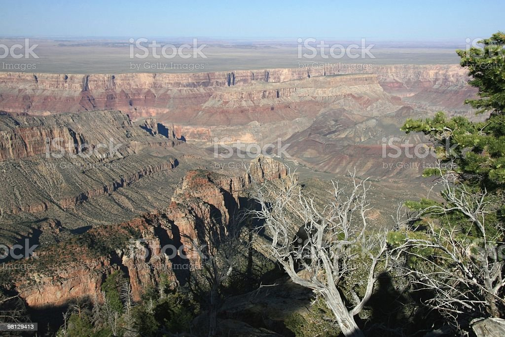 North Rim of the Grand Canyon, Arizona, Southwest USA royalty-free stock photo