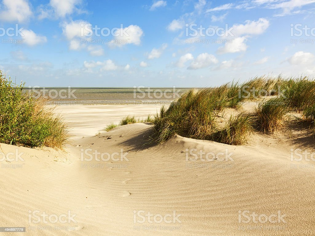 North Sea beach and dunes, Belgium stock photo
