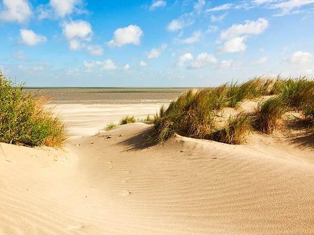 Norte del Mar beach and dunes, Bélgica - foto de stock