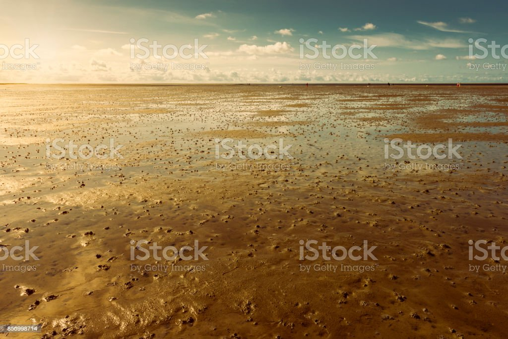 north sea beach in St. Peter Ording stock photo