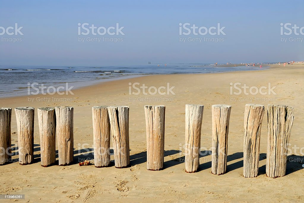 North Sea beach  with wooden breakwater in Zeeland, the Netherlands stock photo